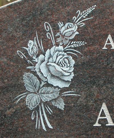 Gravure van rozen